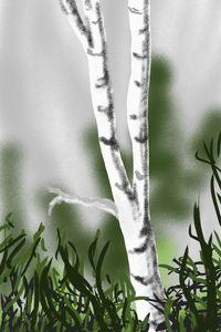 Birch tree - Antoine Khanji