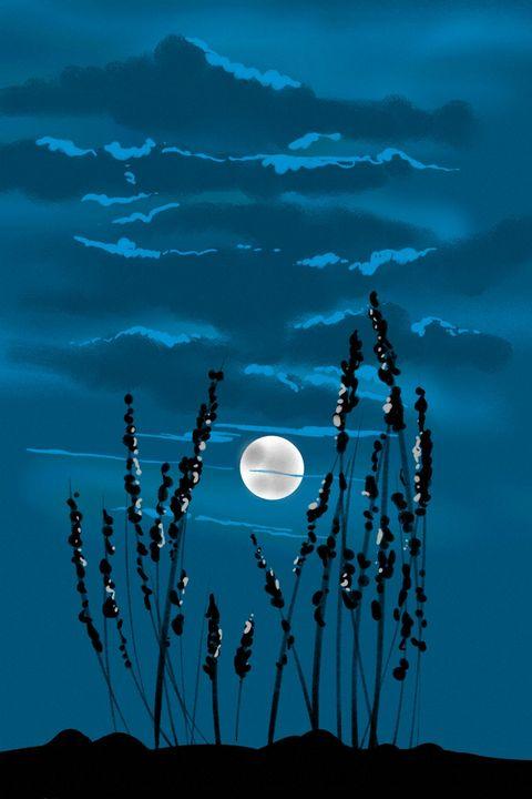 Moonlight - Antoine Khanji