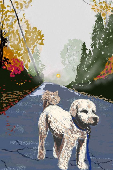Catherine's dog - Antoine Khanji