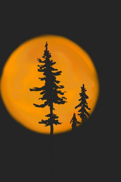 Shining moon - Antoine Khanji
