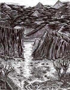 A Forgotten Forest