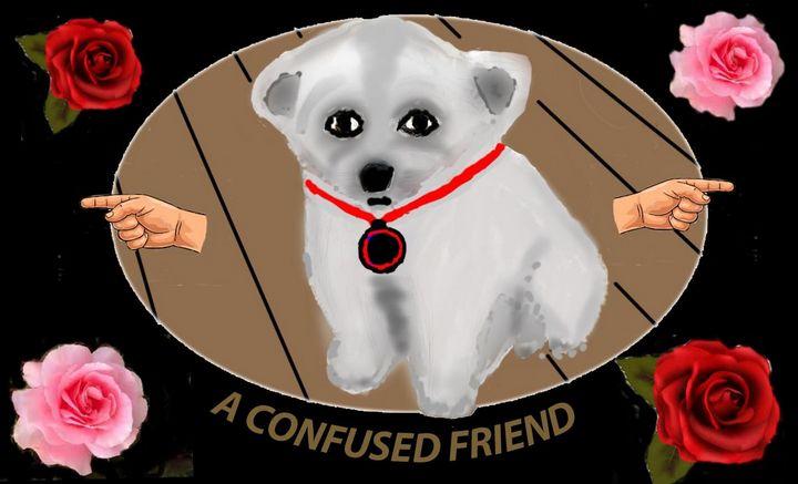 My Confused Friend - My choose
