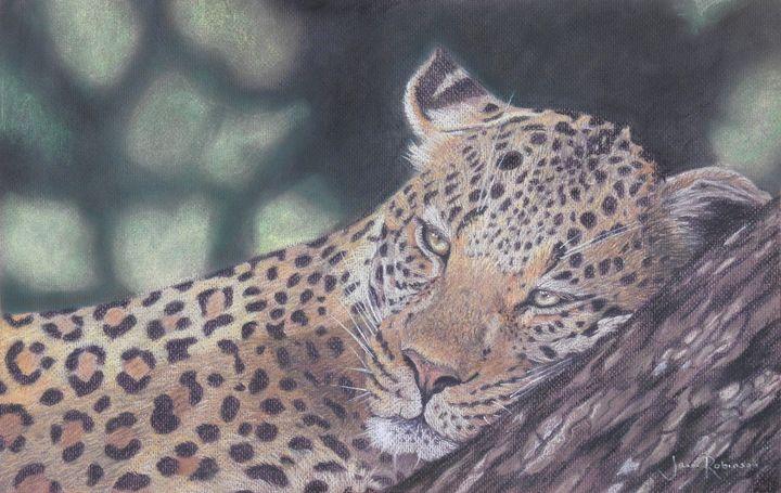 Leopard - Jana Robinson