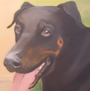 Doberman detail