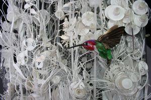Anna's Hummingbird -  Waste Plastic