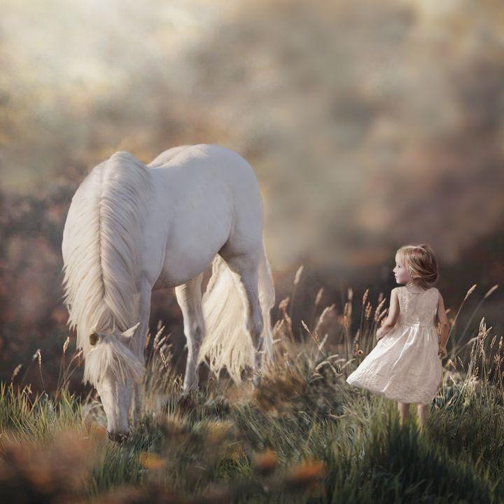 Emily's Dream - WILD ART BY MELINDA