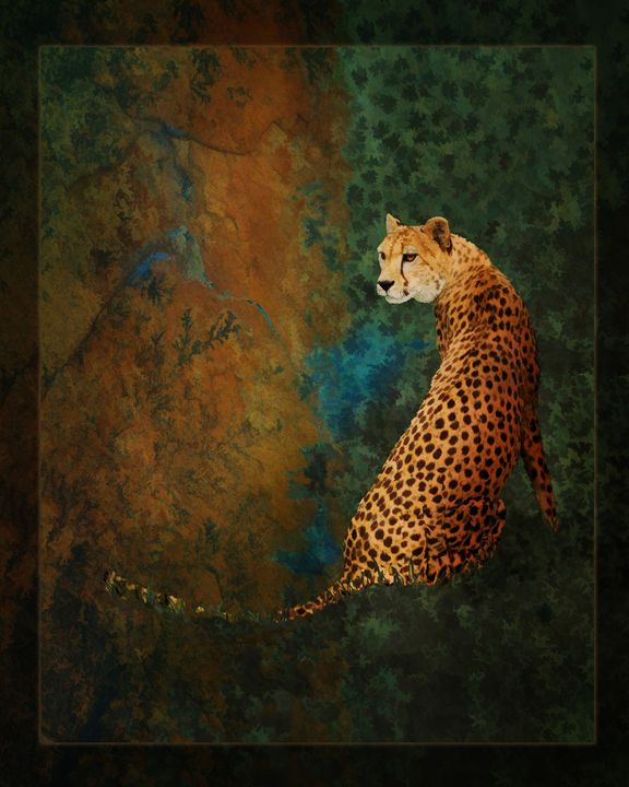 The Watcher - WILD ART BY MELINDA
