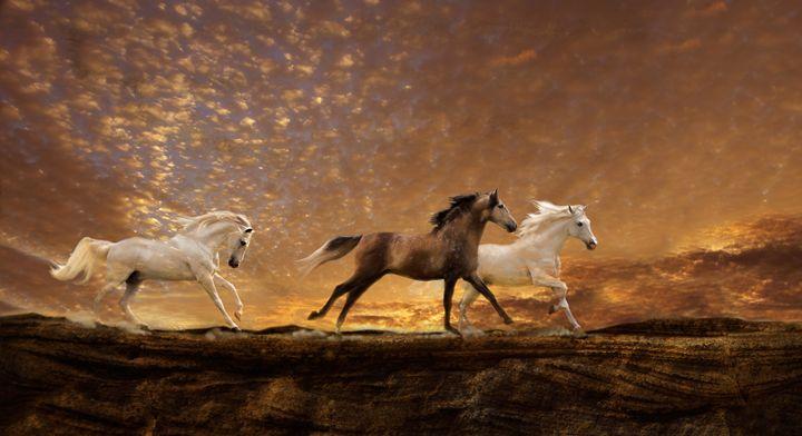 Freed Spirits - WILD ART BY MELINDA