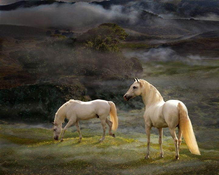Stallions of the Gods - WILD ART BY MELINDA