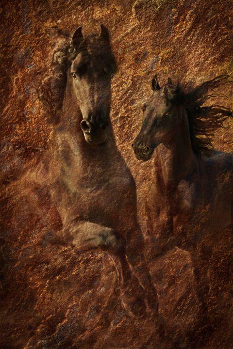The Spirit of Black Sterling - WILD ART BY MELINDA