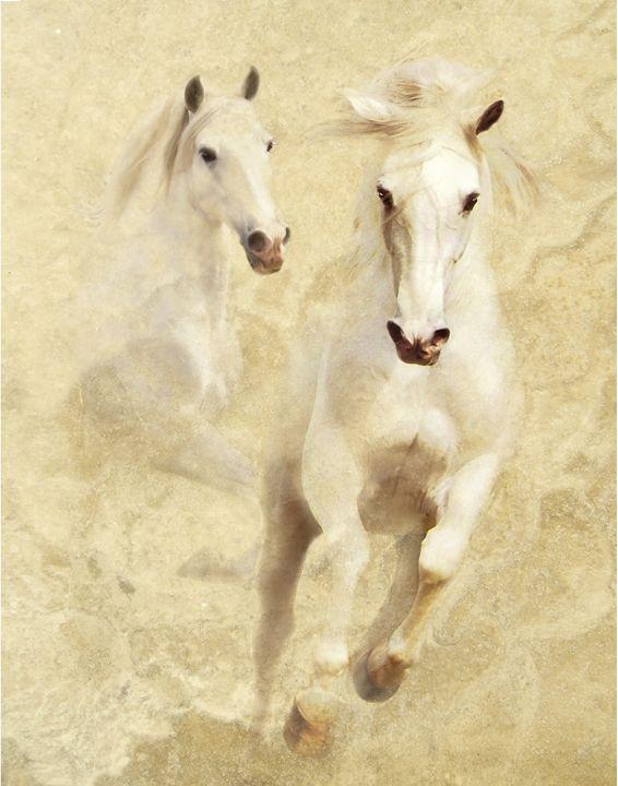 White Thunder - WILD ART BY MELINDA