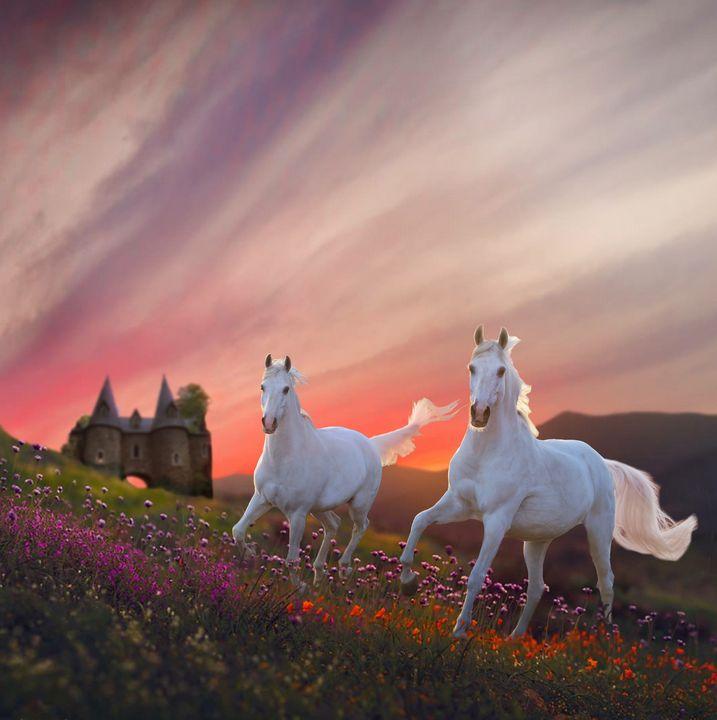 Field of Dreams - WILD ART BY MELINDA