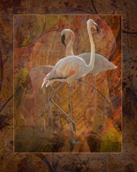 Flamingo Dance - WILD ART BY MELINDA