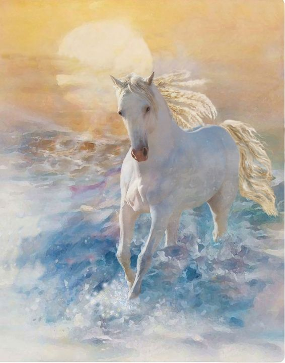 Magic Stallion - WILD ART BY MELINDA