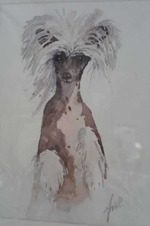 COOL DOG - anki wickison art
