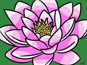 Pretty pink lotus
