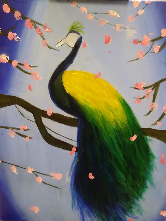 Peacock - ShayDesigns