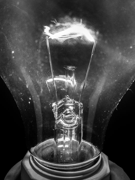 Bulb. - Original art.