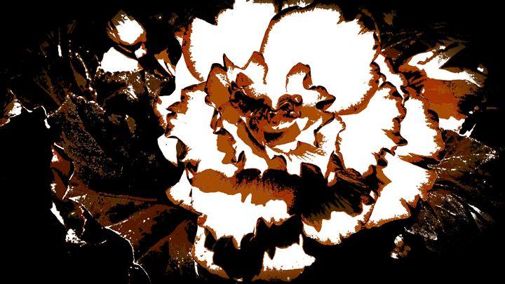 Sepia flower! - Steven's gallery