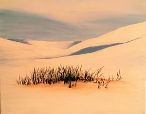 The Silence of Snow Desert