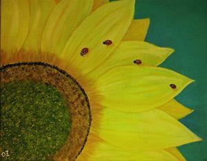 Ladybugs Sitting on Sunflower
