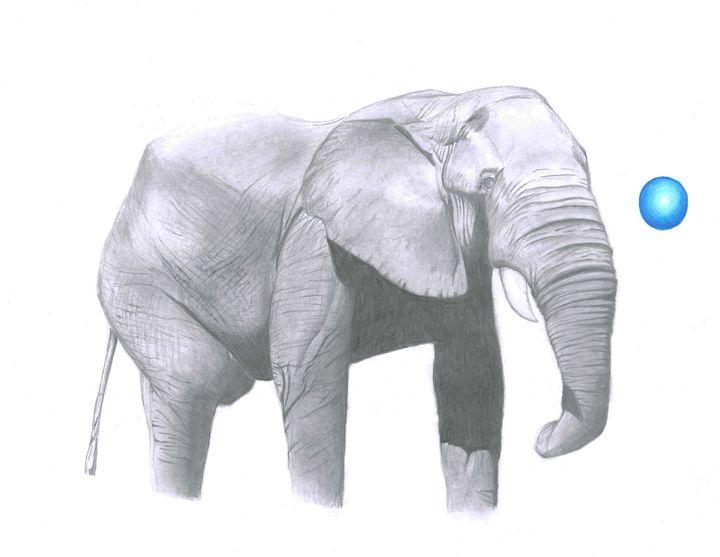 Elephant - Namaste