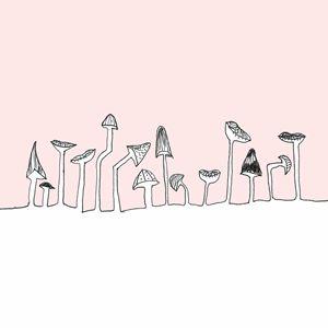 shrooms - Catarina