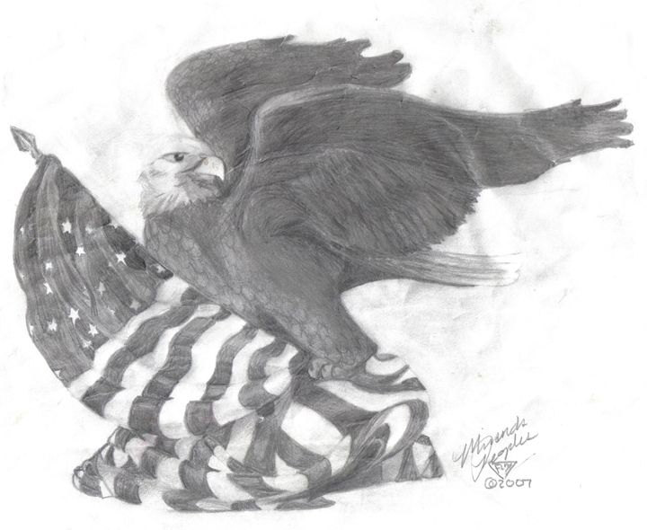 American Bald Eagle - Fleur Devereux's Art shop