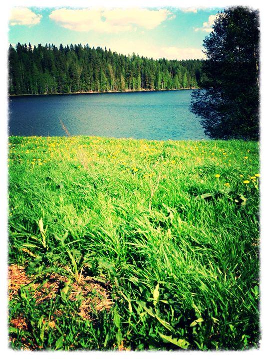 Nature calls! - Kori Boletus