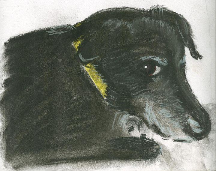 Darby sketch - Randi Vaughan
