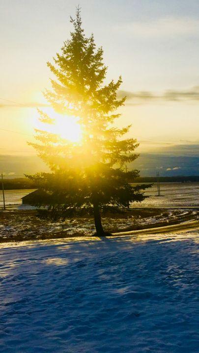 Winter sunset - Kays Art & Photography