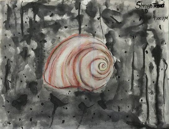 Shell - Sheren