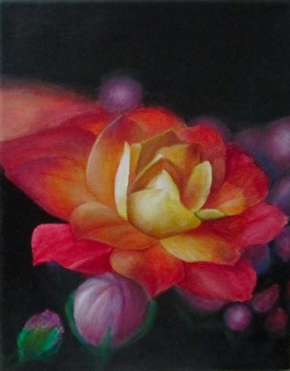 The Colorful Rose - Sheren