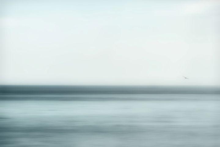 Placid - Chris Bradbury Art