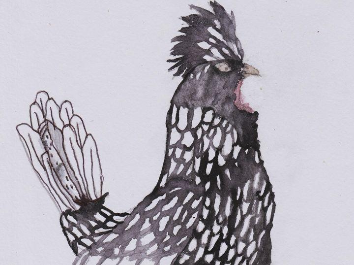 Polish Rooster - Olivia's Imagination Station