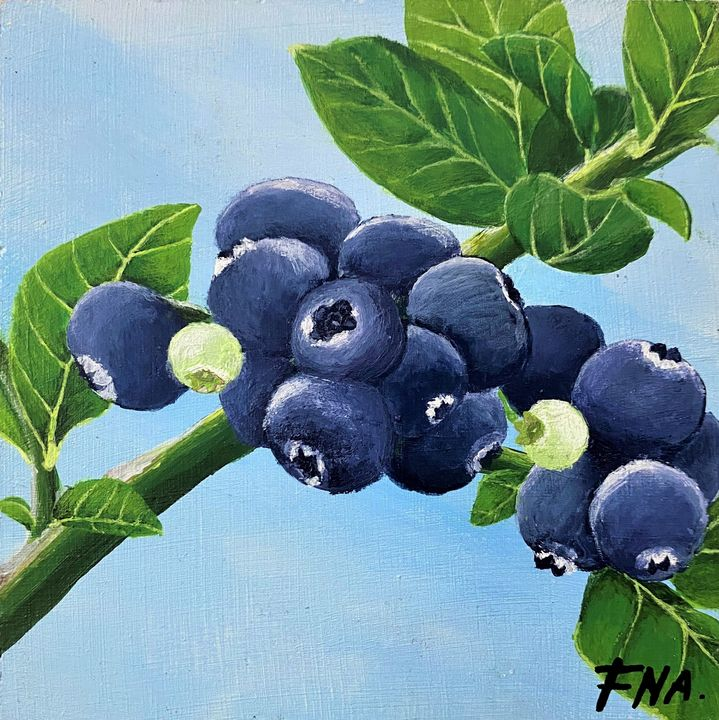 Blueberries - FNA