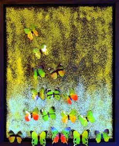 SOLD. Butterflies on sandy beach