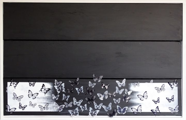 Black and white butterfly life - Conrad Bloemers