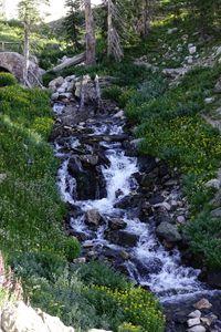 Down the Waterfall
