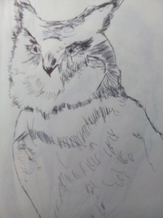 illustration of an owl - John Vitali Art