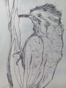 Woodpecker - John Vitali Art