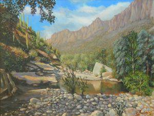 Sabino Canyon, Tucson Arizona