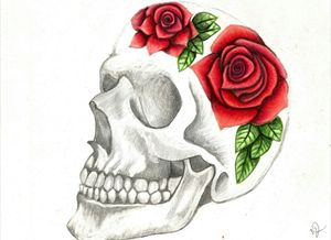 Rose Skull Drawing