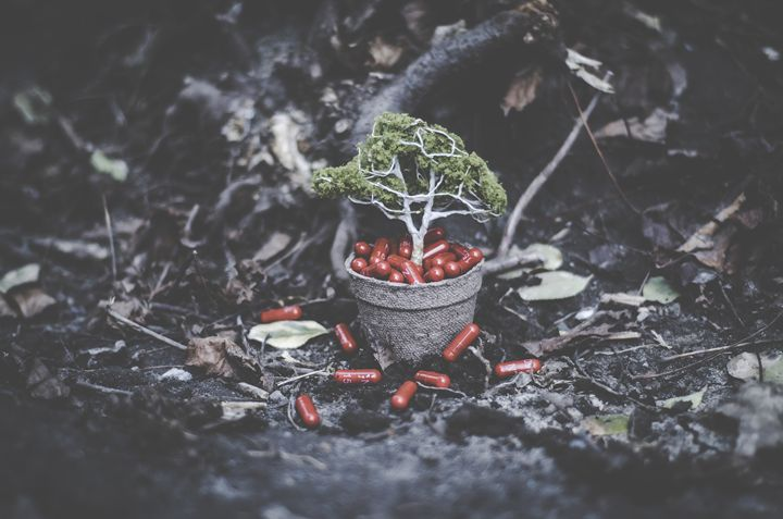 Effexor Tree - Beyond Impression