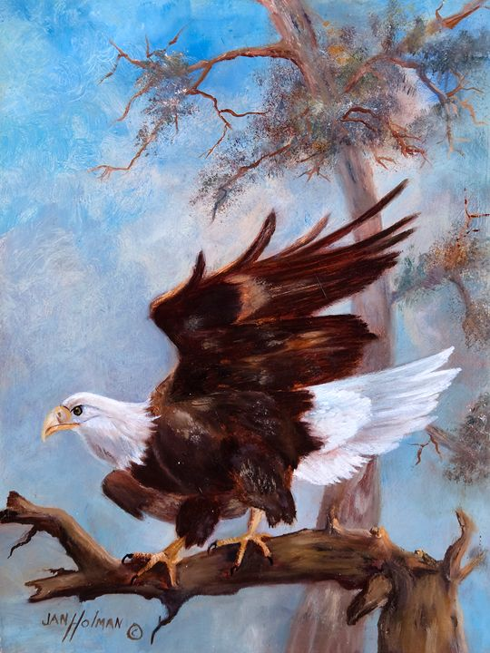 Soar like an Eagle - Jan holman