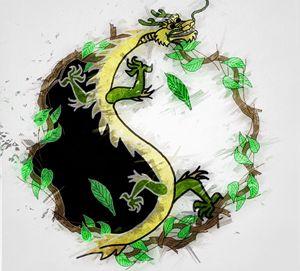 Earth Dragon Yin Yang