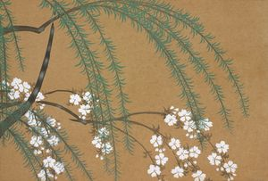 Blossoms from Momoyogusa–Flowers