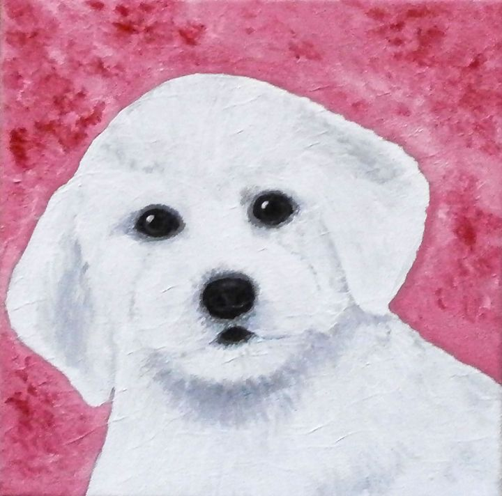 French bichon puppy - Art by Yany