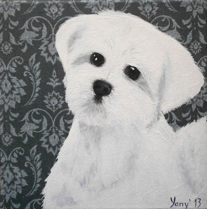 Maltese white furry puppy - Art by Yany