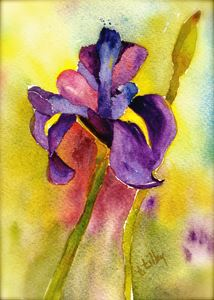 Iris Study in Purple